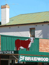 Butcher street view