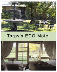 Torpy's Eco Motel